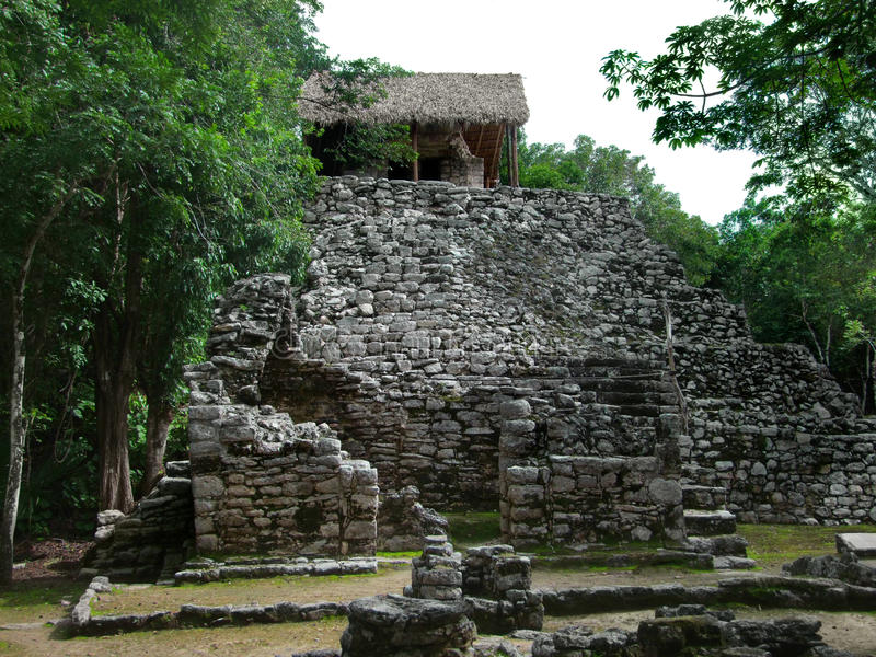 Mayan temple. Ruins of a mayan temple in Coba, Mexico stock images