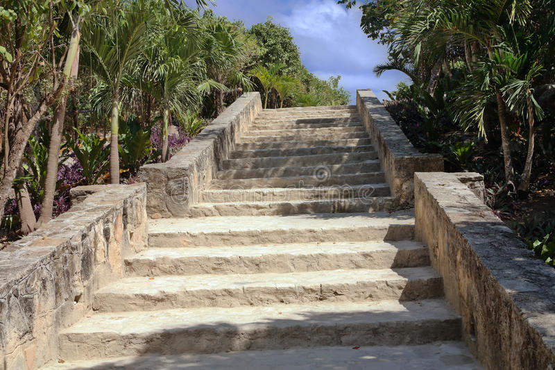 Mayan temple stairs up stock photo