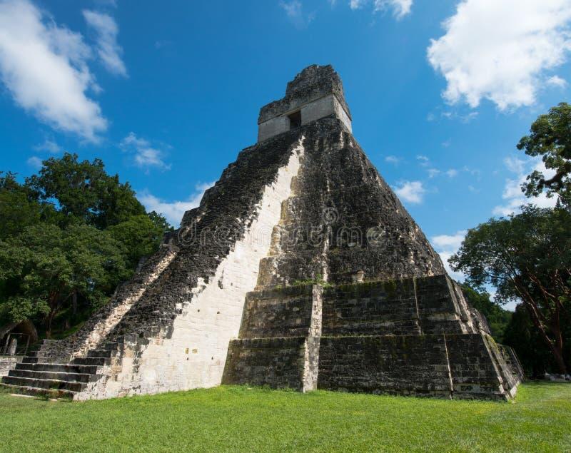Mayan Tikal fördärvar, det Guatemala loppet arkivfoton