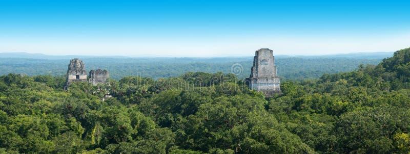 Mayan Tikal fördärvar, det Guatemala loppet royaltyfri bild