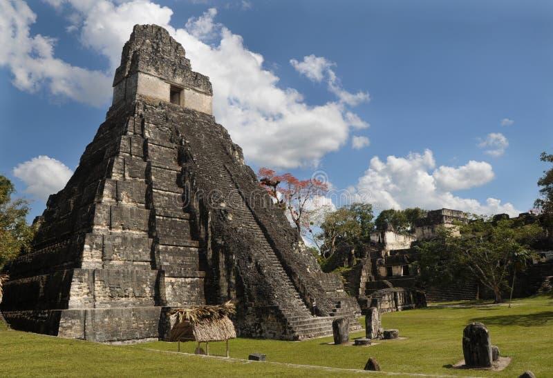 Mayan tikal ruins, guatemala royalty free stock photography