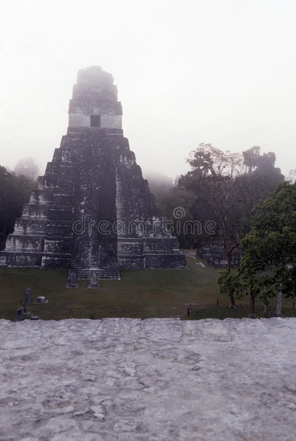 Mayaruinen Tikal, Guatemala stockfotografie