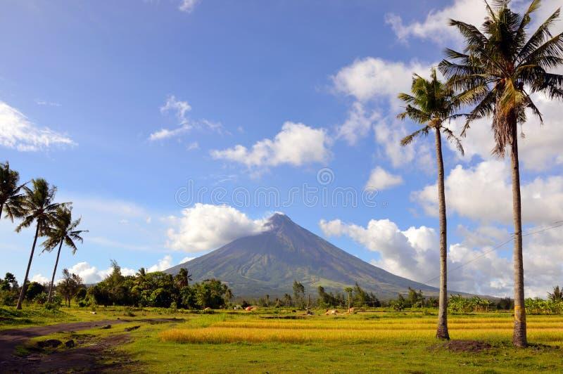 Mayon wulkan zdjęcie stock