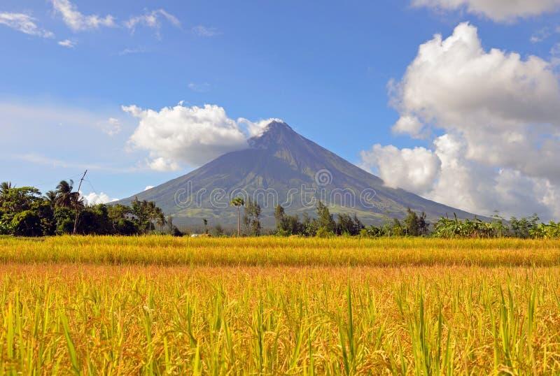 Mayonvulkaan royalty-vrije stock fotografie