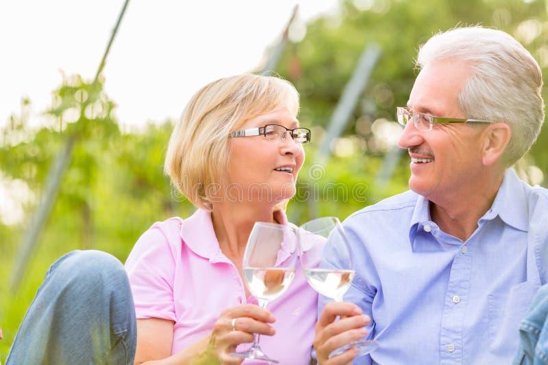 Mayores felices que comen vino de consumición de la comida campestre imagen de archivo libre de regalías