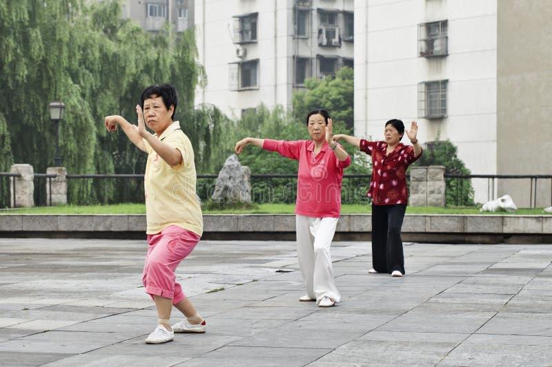 Mayores femeninos que practican a Tai Chi en la madrugada, Xiang Yang, China foto de archivo