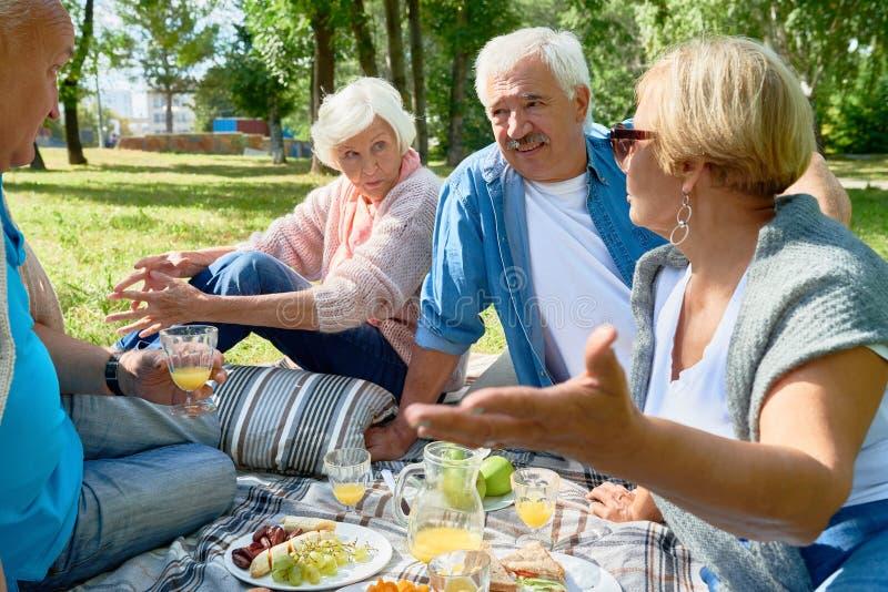 Mayores que disfrutan de comida campestre en Sunny Park fotos de archivo