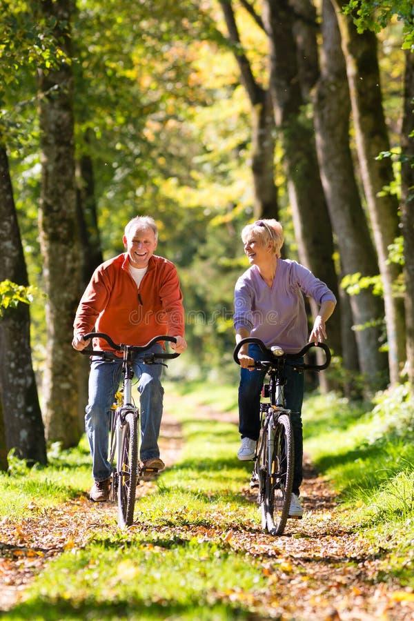 Mayores que ejercitan con la bicicleta imagen de archivo libre de regalías