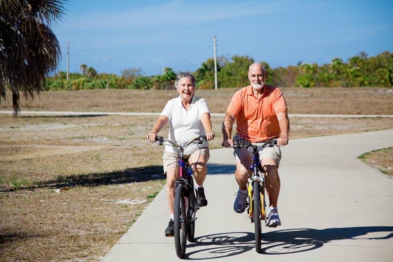 Mayores que montan las bicicletas fotografía de archivo libre de regalías