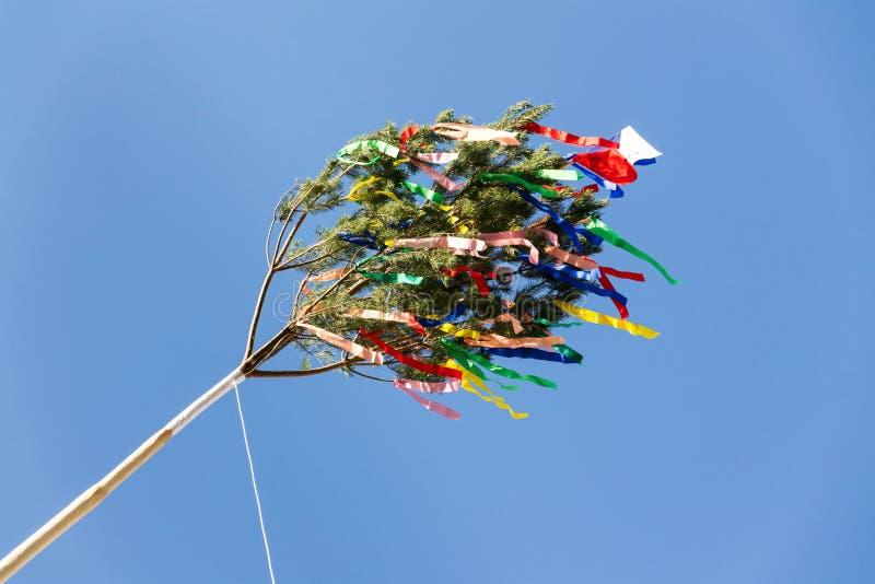 Maypole de madeira alto tradicional erigido com fitas e a bandeira checa pequena foto de stock