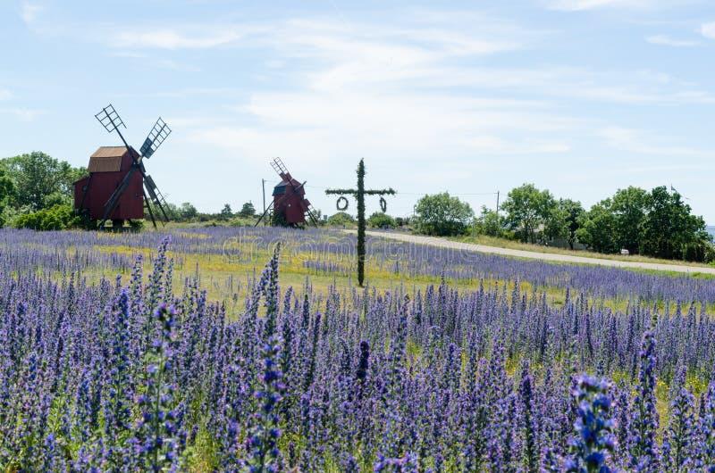 Maypole w błękitnym polu przy szwedzką wyspą Oland zdjęcie stock