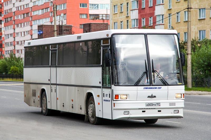 MAZ 152 Vazola obraz stock