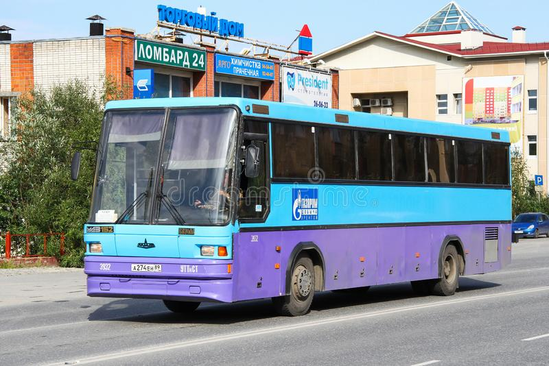 MAZ 152 Vazola zdjęcia stock