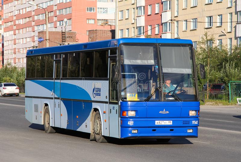 MAZ 152 Vazola obraz royalty free