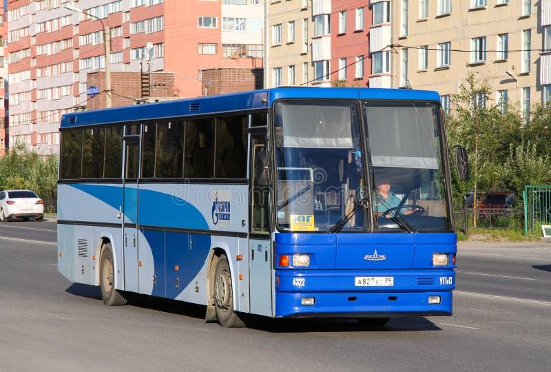 MAZ 152 Vazola. Novyy Urengoy, Russia - August 10, 2012: Intercity coach bus MAZ 152 Vazola in the city street royalty free stock image