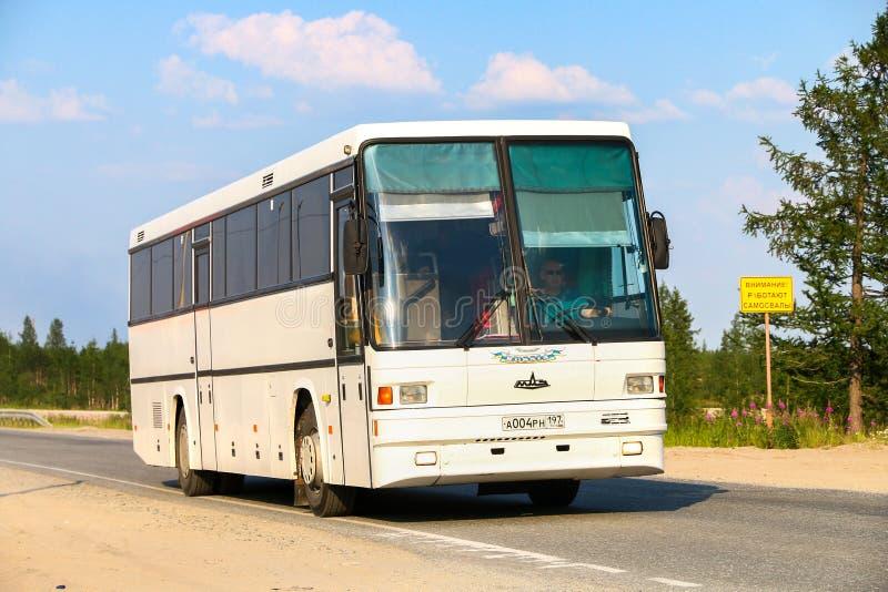 MAZ 152 Vazola. Novyy Urengoy, Russia - July 18, 2019: White intercity coach bus MAZ 152 Vazola in the city street royalty free stock photos