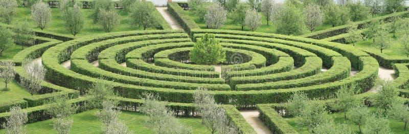 Maze. Bush maze - labyrinth in garden in Troja (Prague, Czech Republic royalty free stock images