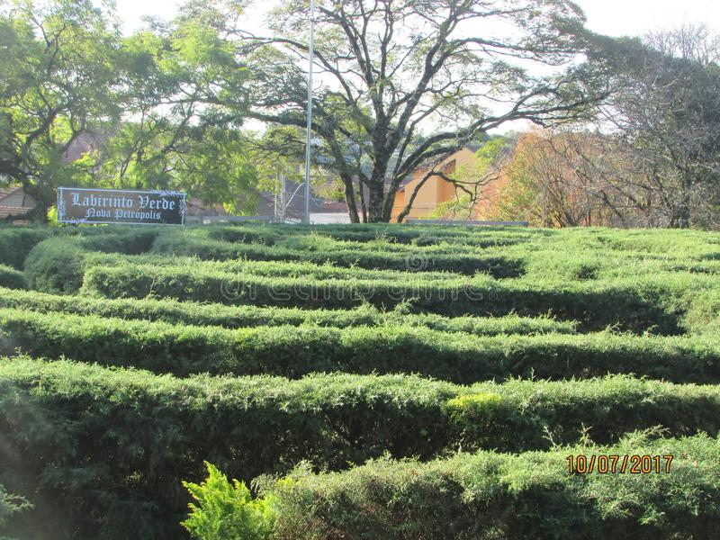 Maze Green, easy to enter, difficult to get to leave royalty free stock images
