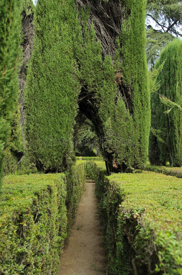 Maze in the Royal Alcazar stock images