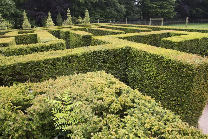 WENTWORTH, UK - June 1, 2018. Maze set within the grounds of Wentworth Woodhouse. Rotherham, South Yorkshire, UK - June 1, 2018. Maze set within the grounds of royalty free stock images