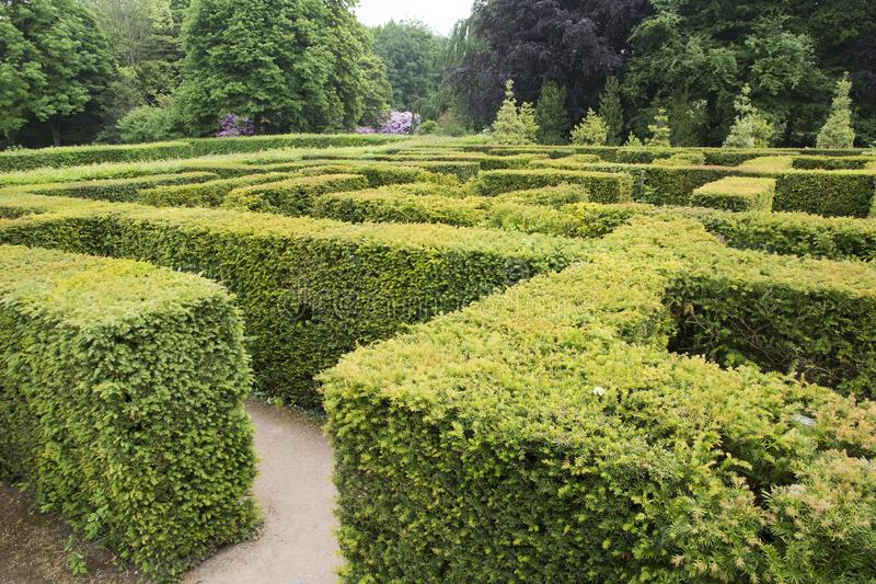 WENTWORTH, UK - June 1, 2018. Maze set within the grounds of Wentworth Woodhouse. Rotherham, South Yorkshire, UK - June 1, 2018. Maze set within the grounds of royalty free stock photos