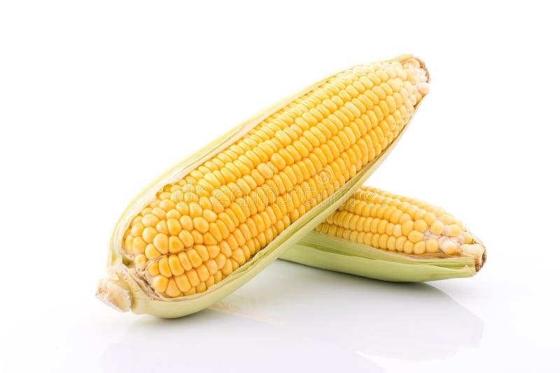 mazorca de maíz aislada en el fondo blanco con Con las hojas verdes fotos de archivo libres de regalías