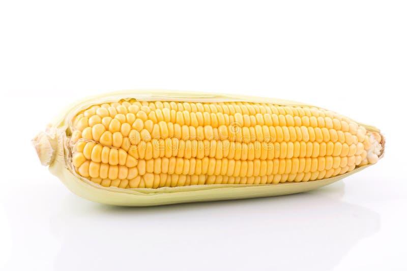 mazorca de maíz aislada en el fondo blanco con Con las hojas verdes fotografía de archivo