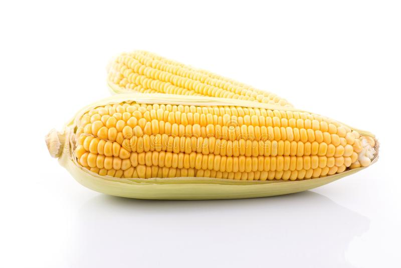 mazorca de maíz aislada en el fondo blanco con Con las hojas verdes imagenes de archivo