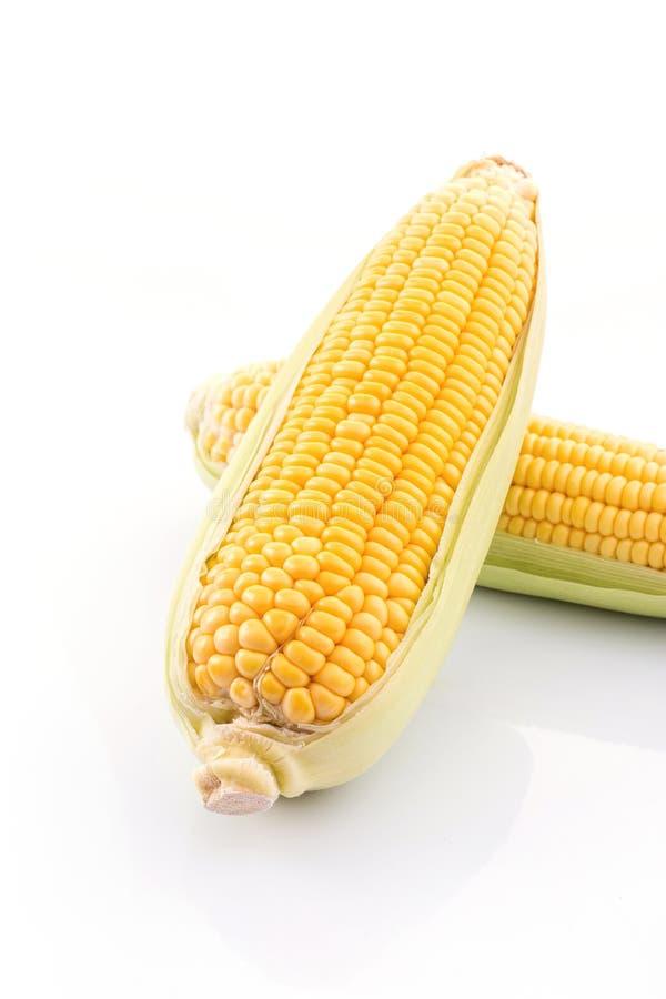 mazorca de maíz aislada en el fondo blanco con Con las hojas verdes foto de archivo libre de regalías