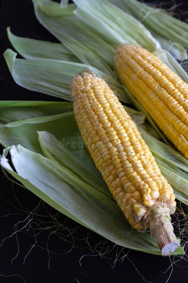 Mazorca de maíz/maíz dulce - con la cáscara fotografía de archivo libre de regalías