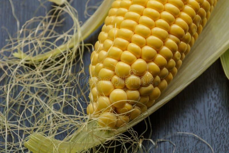 Mazorca de maíz fresca con su cornsilk imagen de archivo libre de regalías