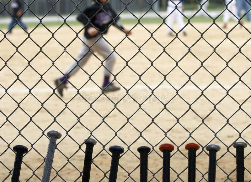 Mazze da baseball immagine stock libera da diritti