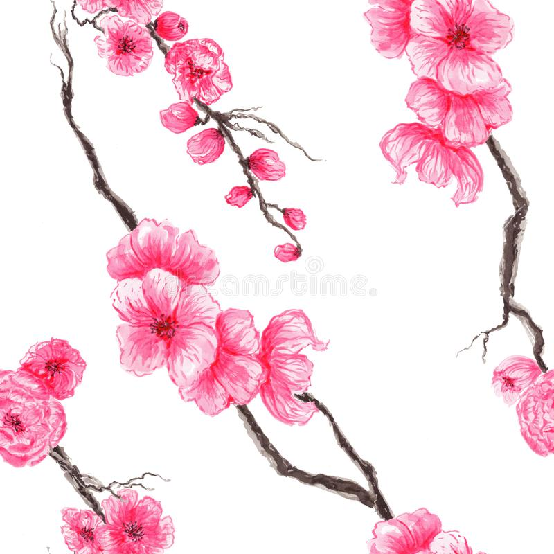 Mazzi del modello senza cuciture dell'acquerello bei con la fioritura della molla di sakura royalty illustrazione gratis