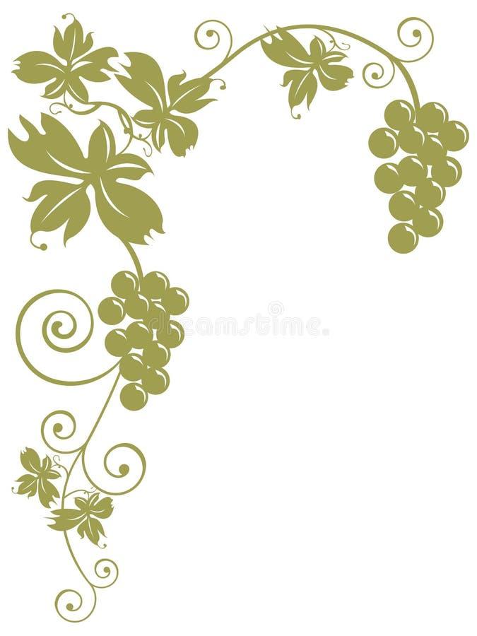 Mazzi di uva e di fogli illustrazione vettoriale