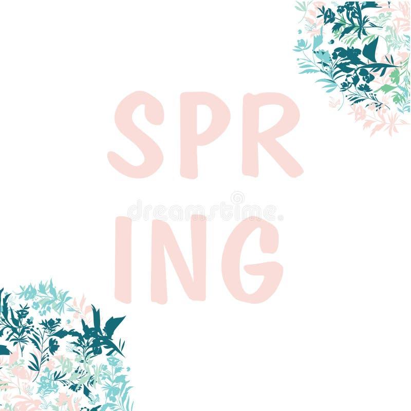 Mazzi svegli della molla, vari fiori della molla su fondo bianco Composizione nella primavera per le carte, inviti illustrazione vettoriale