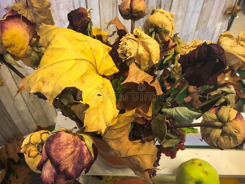 Mazzo asciutto delle foglie, erbario di grande giallo di autunno I cenni storici Struttura fotografie stock