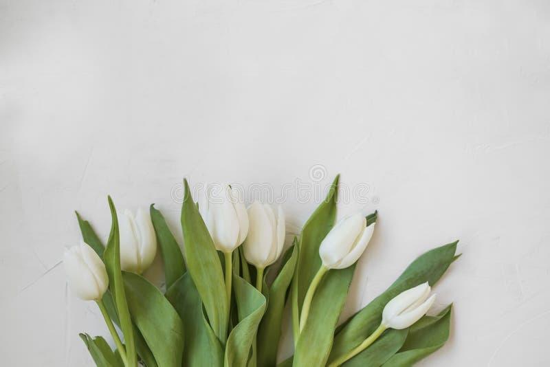 Mazzo bianco dei tulipani con lo spazio della copia, saluto del giorno delle madri della molla di vista superiore con il mazzo de immagini stock libere da diritti