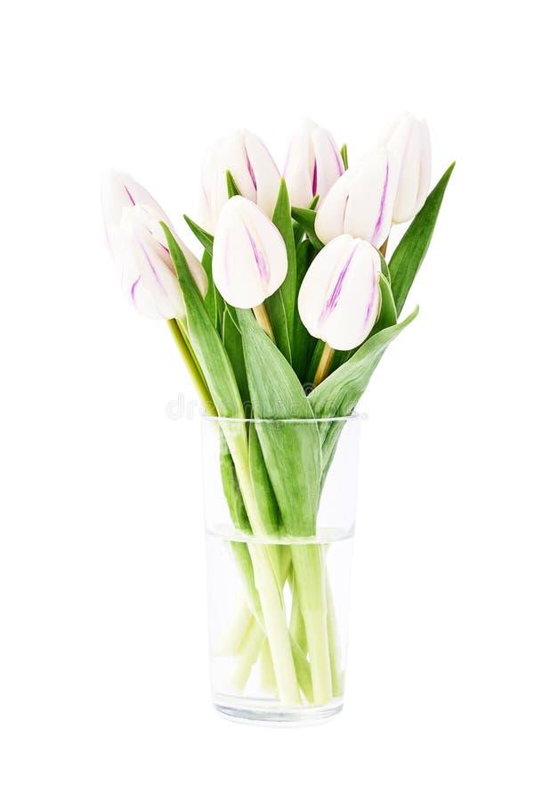 Mazzo bianco dei tulipani in piccolo vaso di vetro isolato sopra fondo bianco con il percorso di ritaglio fotografie stock libere da diritti