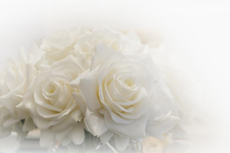 Mazzo bianco delle rose fotografie stock libere da diritti