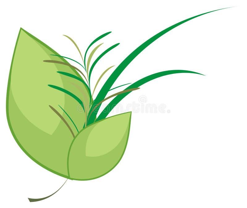 Mazzo culinario delle erbe illustrazione di stock