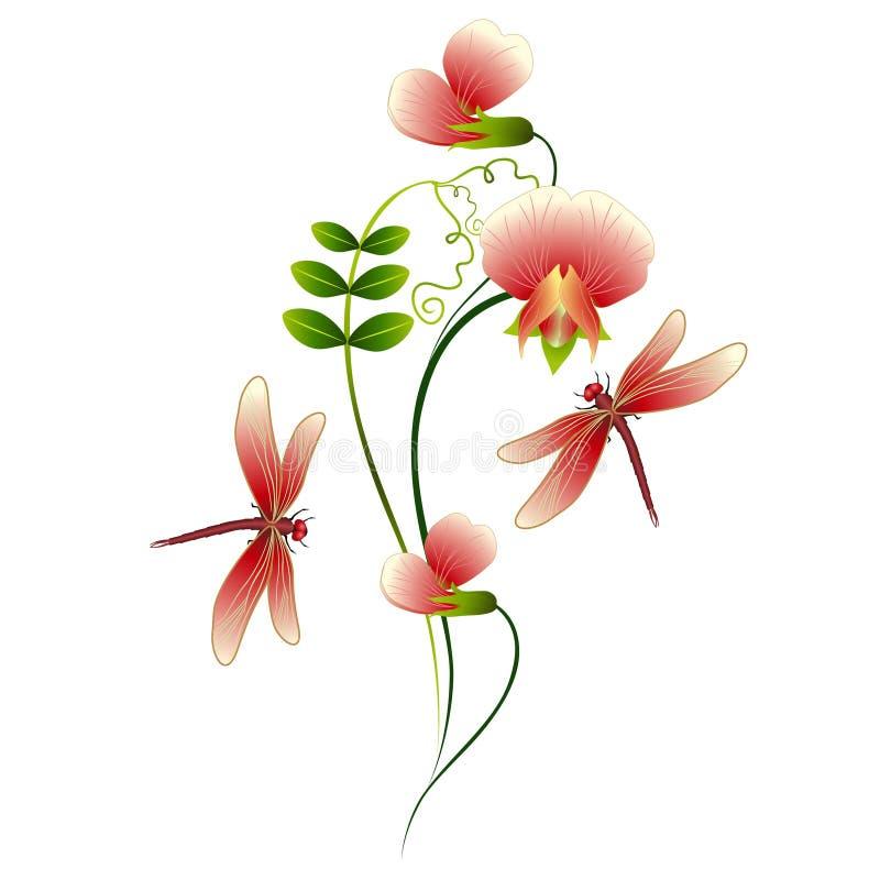 Mazzo dei fiori dei piselli con le libellule illustrazione di stock