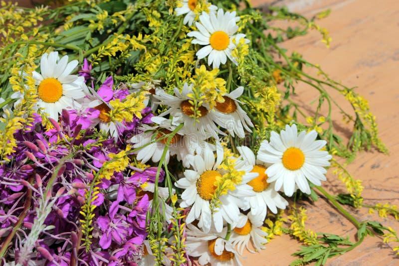 Mazzo dei fiori del campo contro il cielo fotografie stock libere da diritti