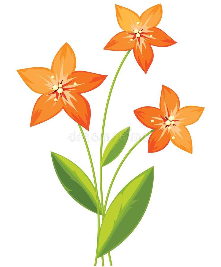 Mazzo dei fiori del giglio illustrazione di stock