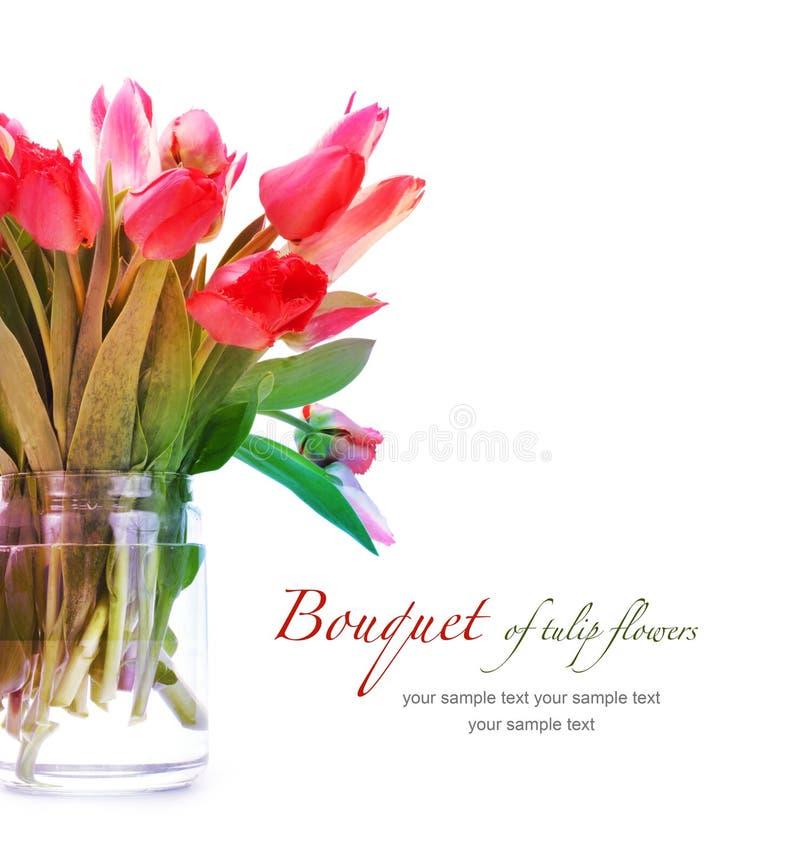Mazzo dei fiori del tulipano fotografia stock