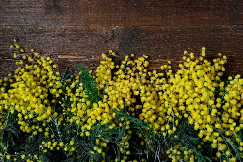 Mazzo dei fiori della mimosa su fondo di legno Internazionale Wo fotografia stock