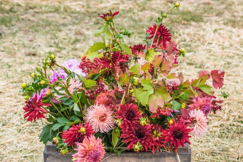 Mazzo dei fiori di autunno fotografia stock libera da diritti