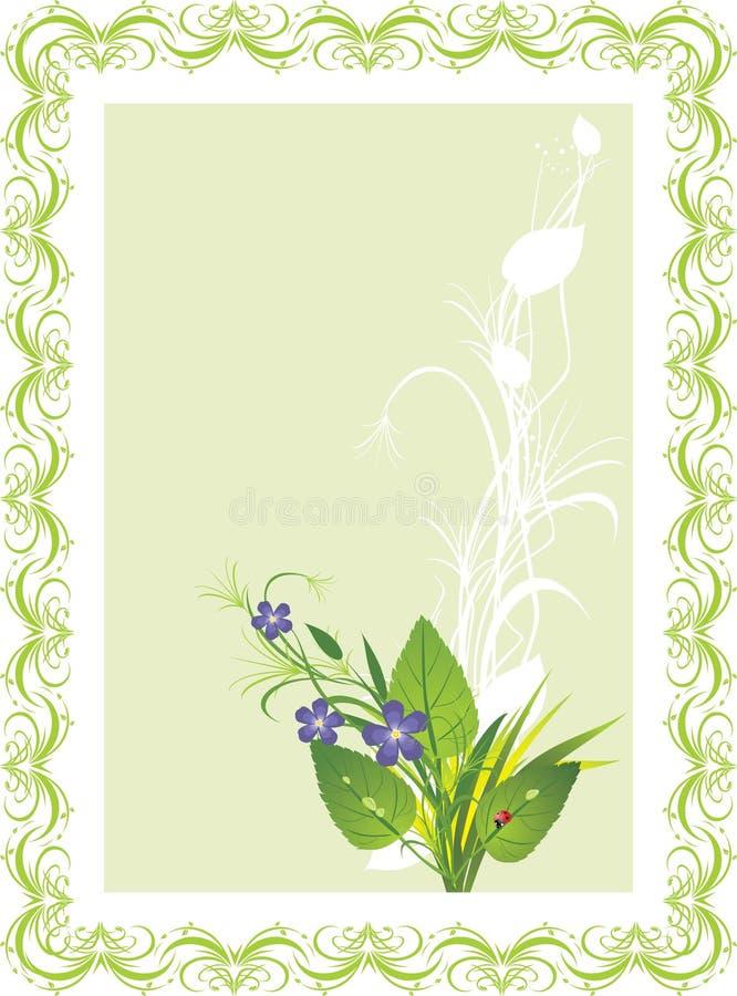 Mazzo dei fiori e dell'erba con la coccinella. Scheda royalty illustrazione gratis