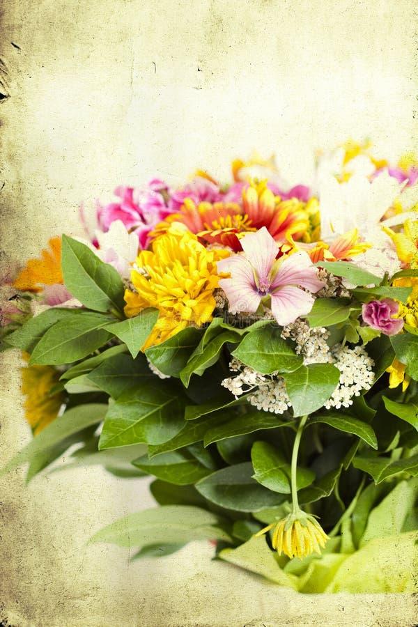 Mazzo dei fiori selvaggi fotografia stock libera da diritti