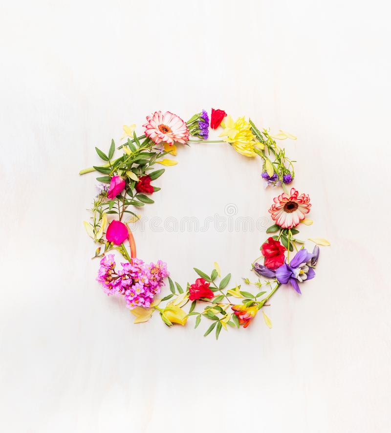 Mazzo dei fiori variopinti della molla fresca, allineato tutt'intorno, spazio per testo, fondo bianco, spazio per testo immagini stock libere da diritti