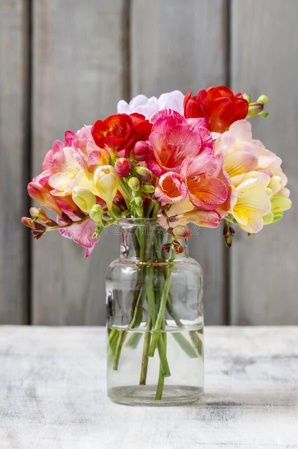 Mazzo dei fiori variopinti di fresia fotografia stock